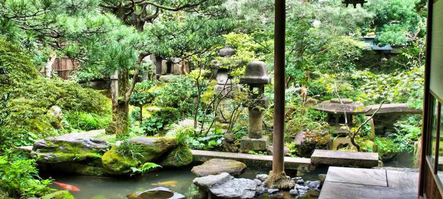 Garden of Samauri House